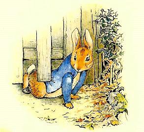 беатрис поттер питер кролик