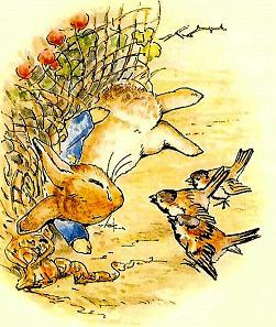 Беатрис Поттер. Сказка про Питера-кролика